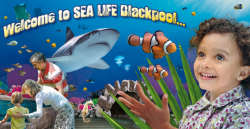 Discount Sea life Centre Tickets
